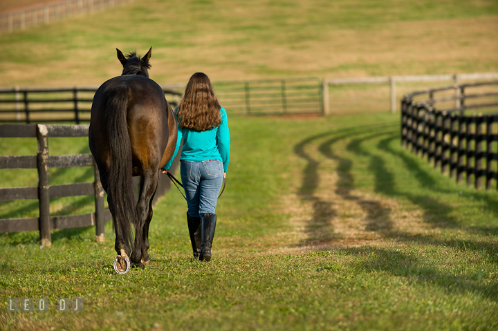 Girl and her horse walking away. Montgomery County high school senior portrait session at Wyndham Oaks, Boyds, Maryland horse stables by photographer Leo Dj Photography. http://leodjphoto.com