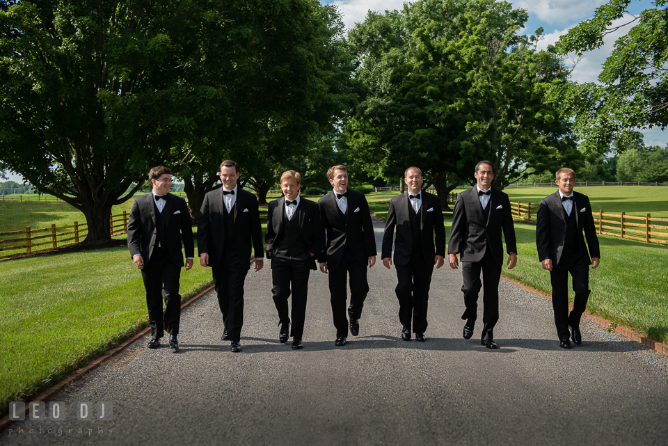 The Groom with his entourage of Best Man and Groomsmen walking together. Aspen Wye River Conference Centers wedding at Queenstown Maryland, by wedding photographers of Leo Dj Photography. http://leodjphoto.com