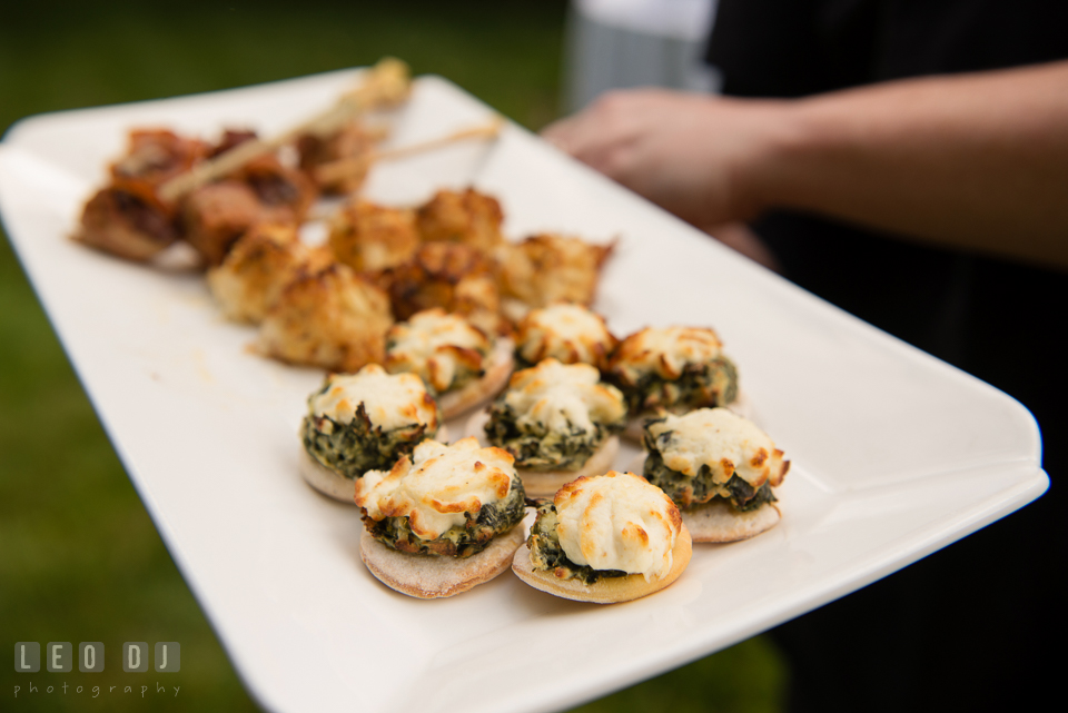 Hors d'oeuvres served at the wedding reception. Aspen Wye River Conference Centers wedding at Queenstown Maryland, by wedding photographers of Leo Dj Photography. http://leodjphoto.com