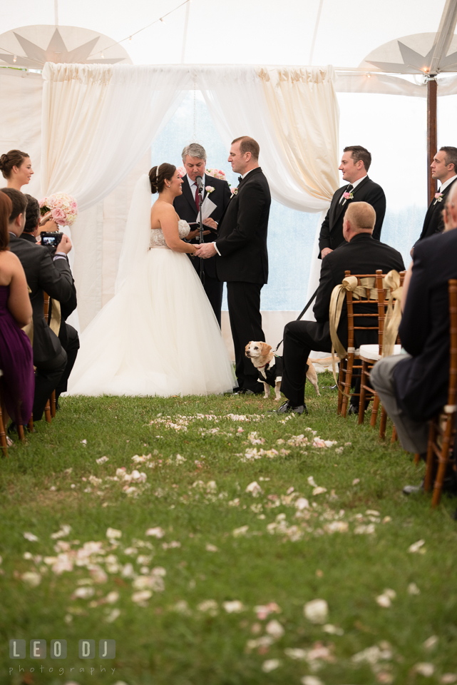 Queenstown Maryland aisle view of Bride and Groom holding hands during ceremony under tent photo by Leo Dj Photography