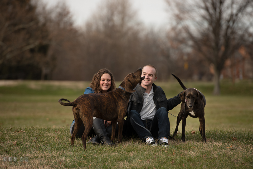 Baker Park Frederick Maryland engaged girl with fiance playing with plott hound pet dogs photo by Leo Dj Photography.