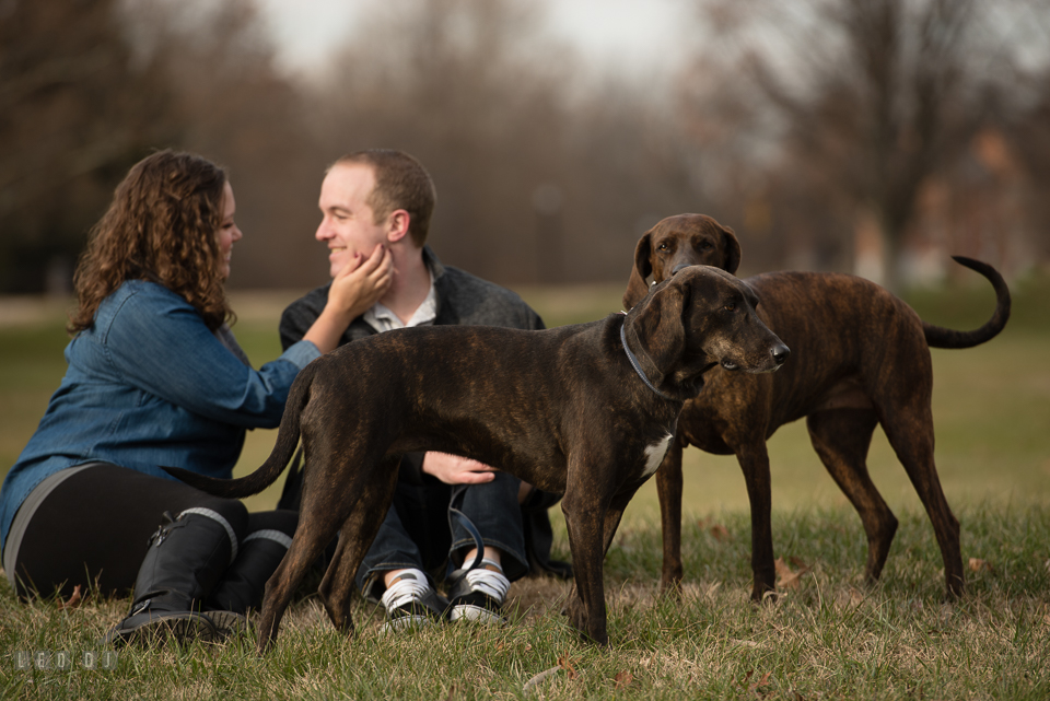 Baker Park Frederick Maryland engaged girl cuddling with fiancé by their dogs photo by Leo Dj Photography.