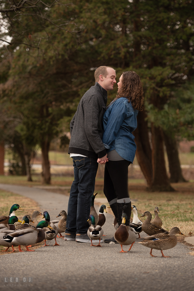 Baker Park Frederick Maryland engaged man almost kiss fiancé surrounded by ducks photo by Leo Dj Photography.
