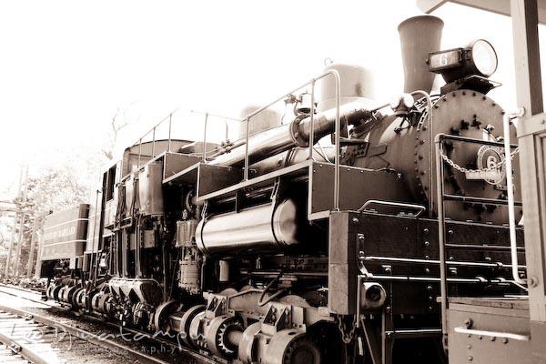 steam engine locomotive, cass and whittaker train station, west virginia railroad