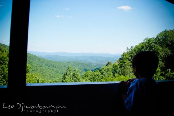 scenic view from train, cass railroad train trip, west virginia