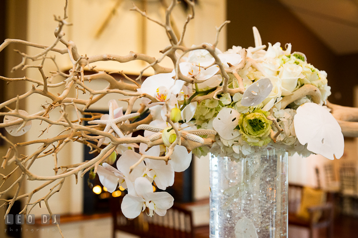 Sand dollar, star fish and white orchids table centerpiece by Intrigue Design and Decor. Chesapeake Bay Beach Club wedding bridal testing photos by photographers of Leo Dj Photography. http://leodjphoto.com