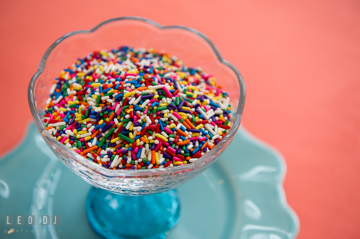 Colorful jimmies chocolate sprinkle topping for ice cream. Chesapeake Bay Beach Club wedding bridal testing photos by photographers of Leo Dj Photography. http://leodjphoto.com