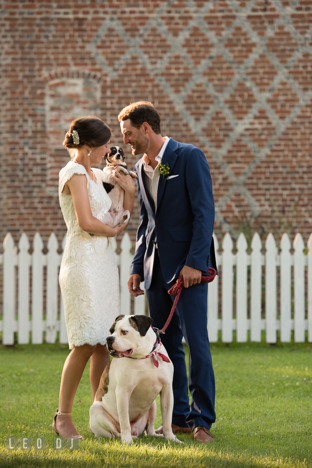 Bride and Groom spending time with their dogs. The Oaks Waterfront Inn wedding, St Michaels, Eastern Shore, Maryland, by wedding photographers of Leo Dj Photography. http://leodjphoto.com