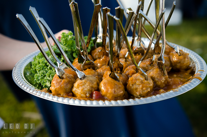 Hor d'oeuvres for the guests. Getting ready and ceremony wedding photos at private estate at Preston, Easton, Eastern Shore, Maryland by photographers of Leo Dj Photography. http://leodjphoto.com