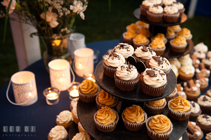 Cupcakes to be cut by the Bride and Groom. Reception party wedding photos at private estate at Preston, Easton, Eastern Shore, Maryland by photographers of Leo Dj Photography. http://leodjphoto.com