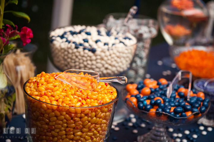 Assorted candies for desert. Reception party wedding photos at private estate at Preston, Easton, Eastern Shore, Maryland by photographers of Leo Dj Photography. http://leodjphoto.com