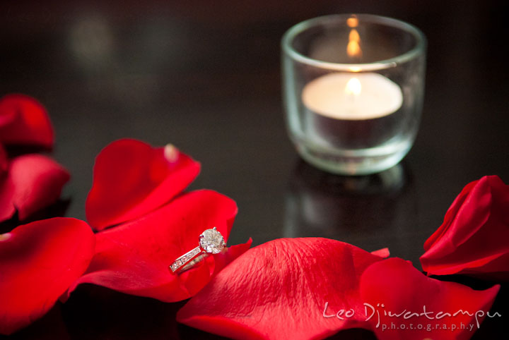 Engagement wedding ring on red rose flower petals. Engagement proposal and pre wedding photo session at Restaurant Michel at Ritz-Carlton Hotel, Tysons Corner, Virginia, by Leo Dj Photography