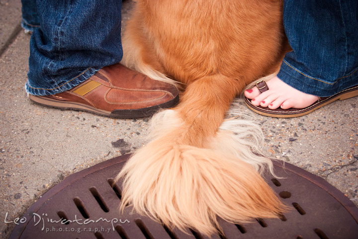An engaged guy, his fiancée and their dog's tail. Washington DC National Zoo pre-wedding engagement session by Leo Dj Photography