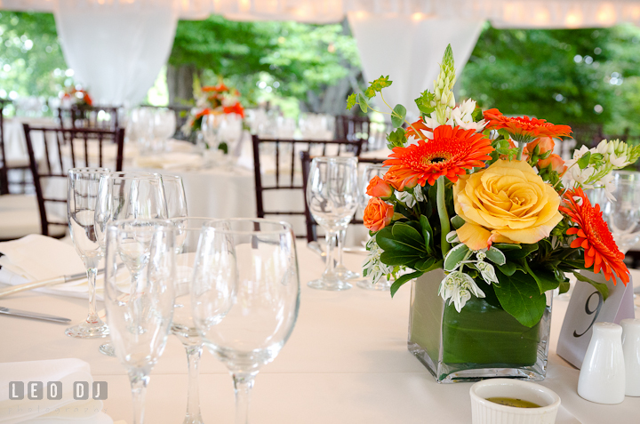Yellow rose and orange gerbera daisy flowers for table centerpiece. Historic London Town and Gardens wedding photos at Edgewater Annapolis, Maryland by photographers of Leo Dj Photography. http://leodjphoto.com