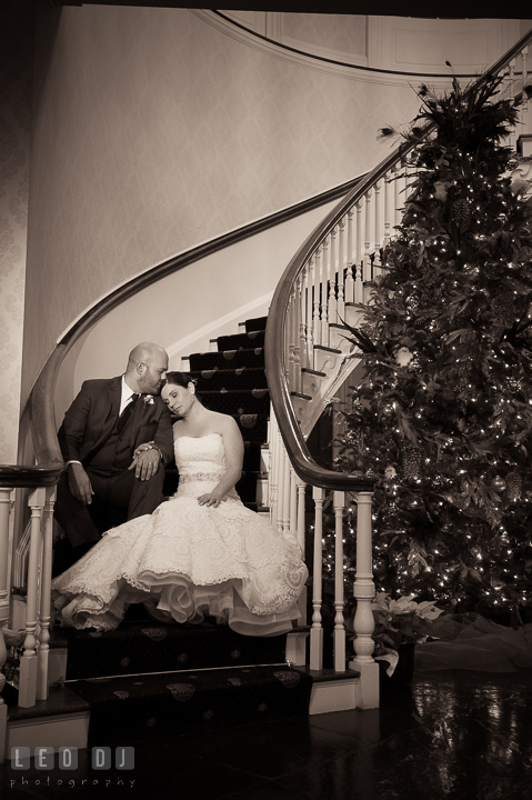 Groom kissed Bride's forehead on lobby's stairway by a Christmas tree. The Tidewater Inn wedding, Easton, Eastern Shore, Maryland, by wedding photographers of Leo Dj Photography. http://leodjphoto.com