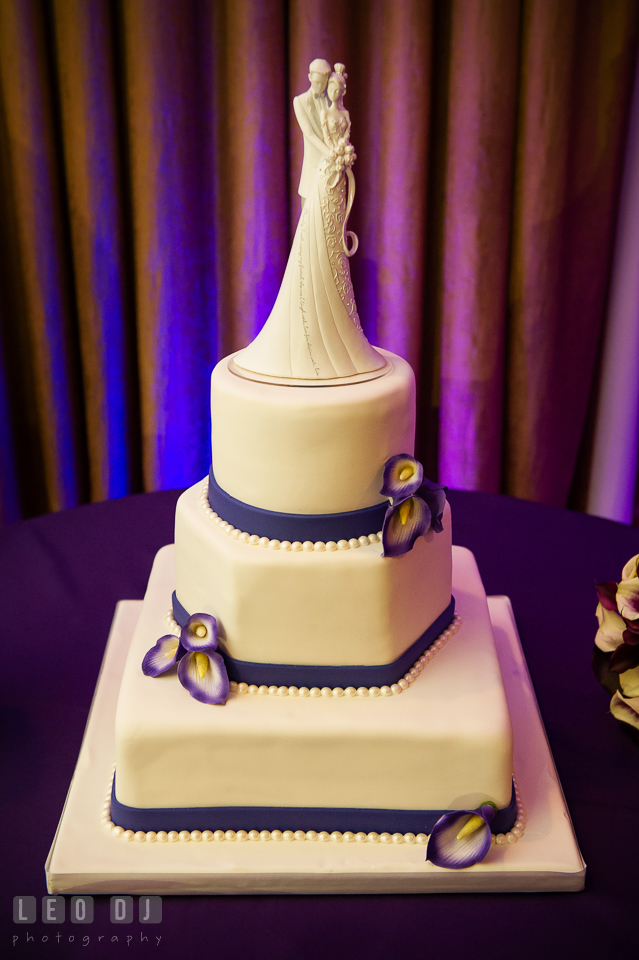 The wedding cake by The Icing Baking Company. Harbour View Events Woodbridge Virginia wedding ceremony and reception photo, by wedding photographers of Leo Dj Photography. http://leodjphoto.com