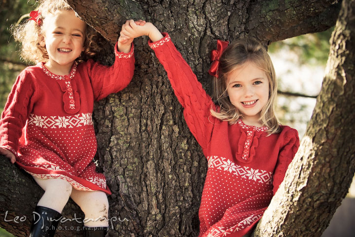 two sisters sitting on a tree, holding up hands high, big smile. Candid children photographer St Michael Tilghman Island MD