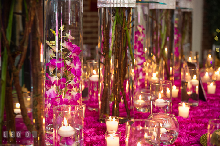 Purple orchids inside tall glass vase. Historic Inns of Annapolis wedding bridal fair photos at Calvert House by photographers of Leo Dj Photography. http://leodjphoto.com