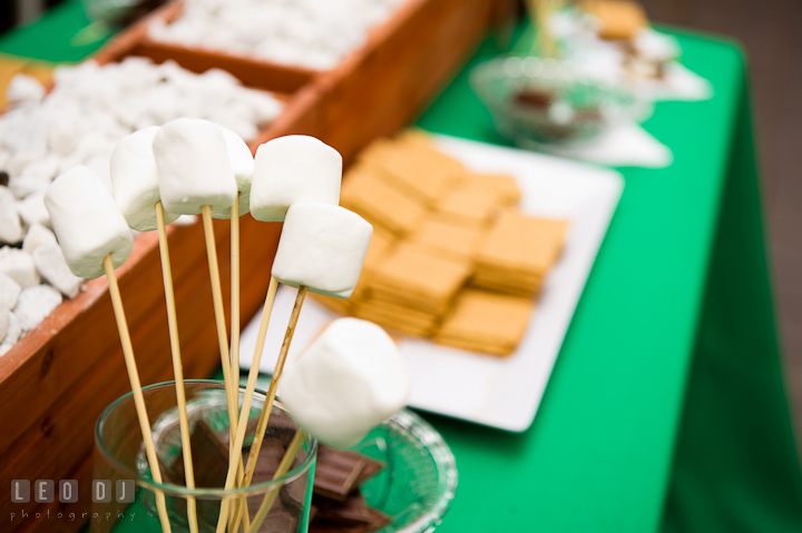 Mushroom, graham crackers, and chocolate for s'mores. Historic Inns of Annapolis wedding bridal fair photos at Calvert House by photographers of Leo Dj Photography. http://leodjphoto.com