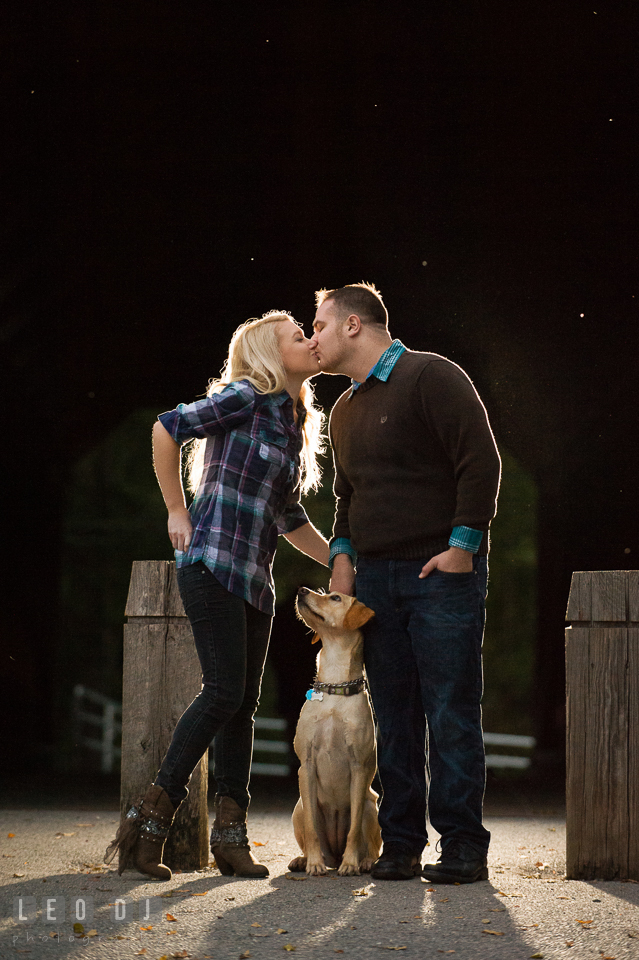 Engaged girl and her fiance kissing by the Sachs Covered Bridge with their labrador dog looking at them. Gettysburg PA pre-wedding engagement photo session, by wedding photographers of Leo Dj Photography. http://leodjphoto.com