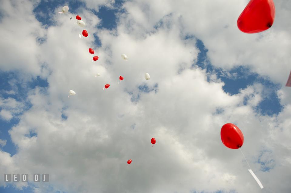Heart-shaped balloons flown towards the sky. Landgrafen Restaurant, Jena, Germany, wedding reception and ceremony photo, by wedding photographers of Leo Dj Photography. http://leodjphoto.com