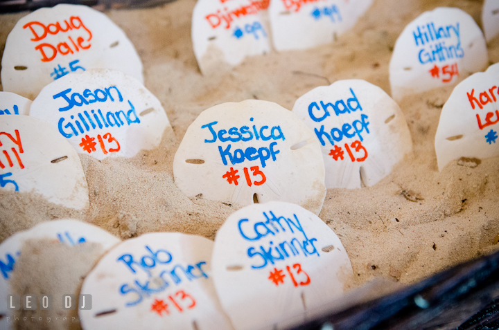 Sand dollars for table assignment cards. Carnival Cruise ship destination wedding reception photos of Jessica and Chad, Cozumel Mexico by photographers of Leo Dj Photography.