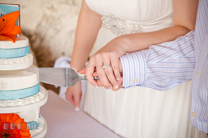 Close up shot of Bride Groom cutting the cake. Carnival Cruise ship destination wedding reception photos of Jessica and Chad, Cozumel Mexico by photographers of Leo Dj Photography.