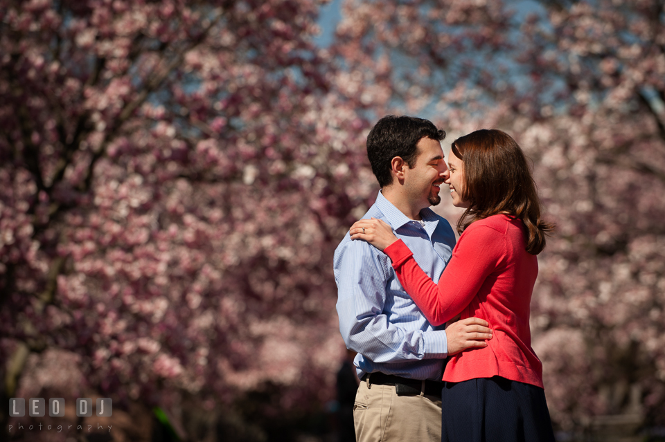 Engaged couple getting close and intimate and laughing together in between magnolia trees. Washington DC pre-wedding engagement photo session at Adams Morgan and the Smithsonians, by wedding photographers of Leo Dj Photography. http://leodjphoto.com