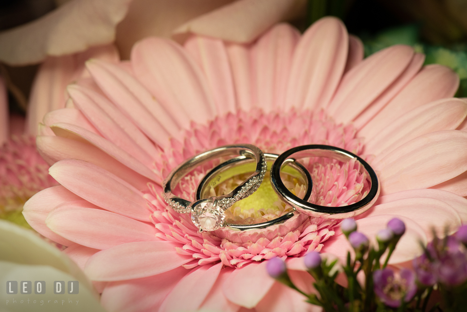 Four Seasons Hotel Baltimore wedding bands and engagement rings photo by Leo Dj Photography