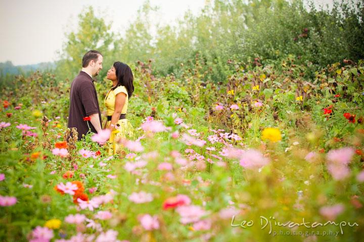 Field Of Flowers Wedding Michigan : Engagement kaycee don