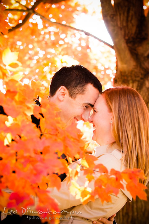 Engaged girl touching foreheads with her fiancé under an orange foliage tree. Chestertown Maryland and Washington College Pre-Wedding Engagement Session Photographer, Leo Dj Photography