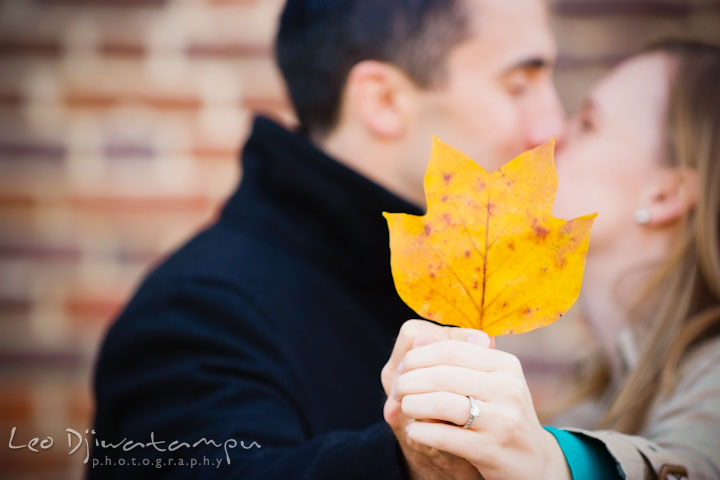 Engaged guy and girl kissing, covered by a yellow leaf and showing fiancée's engagement ring. Chestertown Maryland and Washington College Pre-Wedding Engagement Session Photographer, Leo Dj Photography
