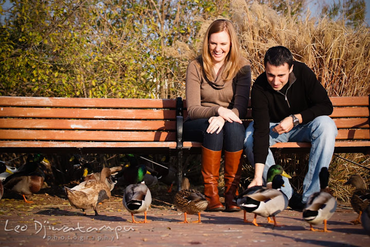 Engaged guy and girl feeding a flock of ducks. Chestertown Maryland and Washington College Pre-Wedding Engagement Session Photographer, Leo Dj Photography