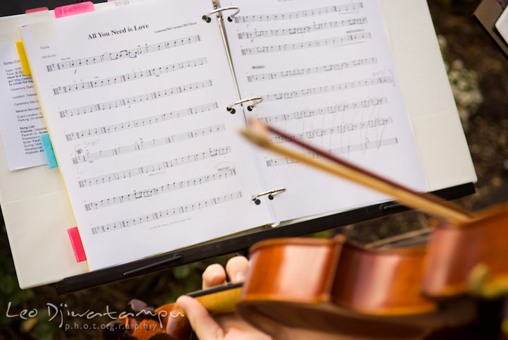 Chesapeake Strings playing a piece for the ceremony. The Tidewater Inn Wedding, Easton Maryland, ceremony photo coverage of Kelsey and Jonnie by wedding photographers of Leo Dj Photography.