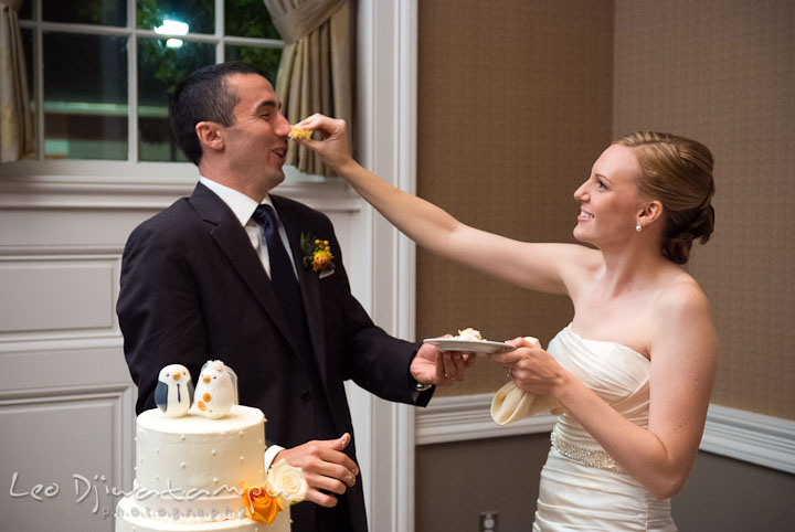 Bride smushed cake to groom's nose. The Tidewater Inn Wedding, Easton Maryland, reception photo coverage of Kelsey and Jonnie by wedding photographers of Leo Dj Photography.