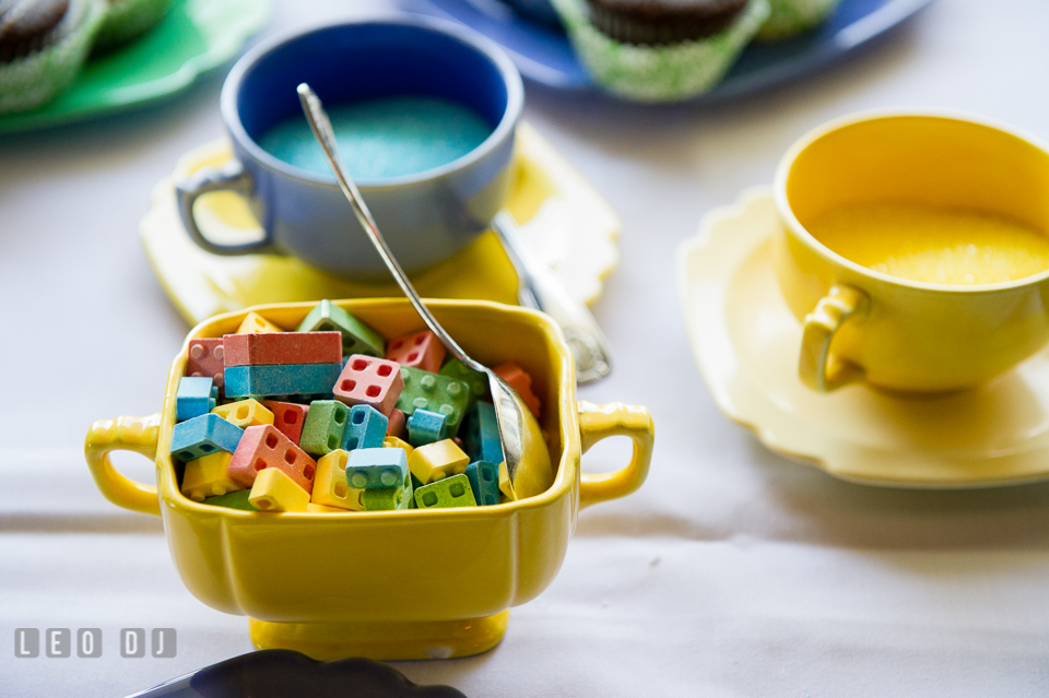 Colorful sugar cubes in LEGO shaped bricks. Fisherman's Inn, Safe Harbor Church, Kent Island, Eastern Shore Maryland, wedding reception and ceremony photo, by wedding photographers of Leo Dj Photography. http://leodjphoto.com