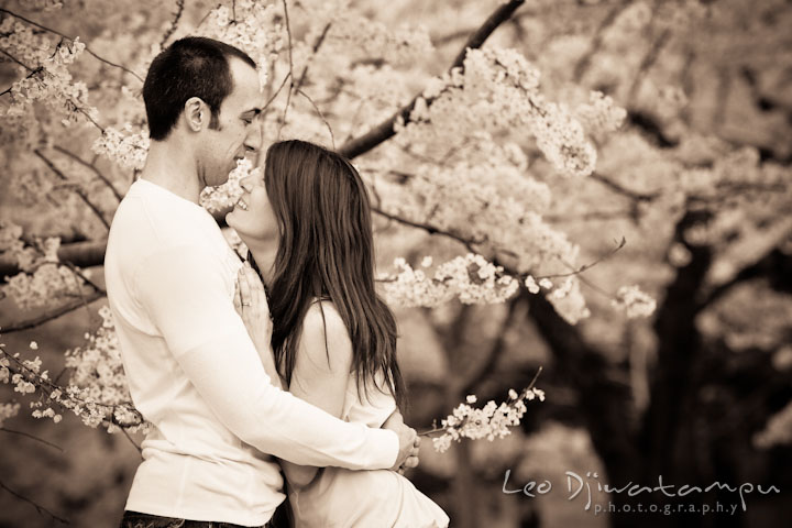 Fiancé and his fiancée hugging by cherry blossom trees. Washington DC Tidal Basin Cherry Blossom Pre-Wedding Engagement Photo Session by Wedding Photographer Leo Dj Photography