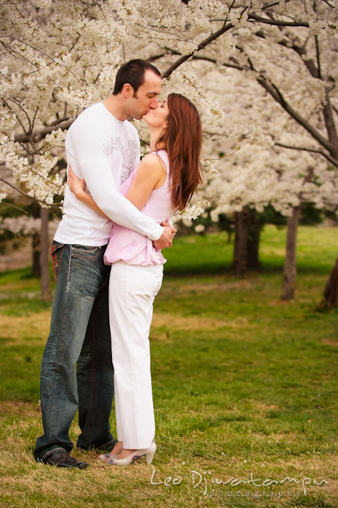 Engaged guy and girl kissing in the midst of cherry blossom trees. Washington DC Tidal Basin Cherry Blossom Pre-Wedding Engagement Photo Session by Wedding Photographer Leo Dj Photography