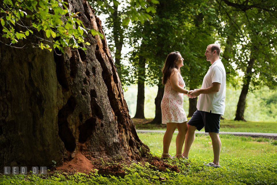 Engaged couple holding hands by a large tree bark. Leesburg Virginia pre-wedding engagement photo session at River Creek Club, by wedding photographers of Leo Dj Photography. http://leodjphoto.com