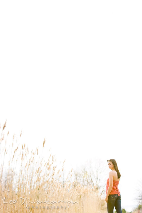 Girl by tall grass meadow. Kent Island Annapolis High School Senior Portrait