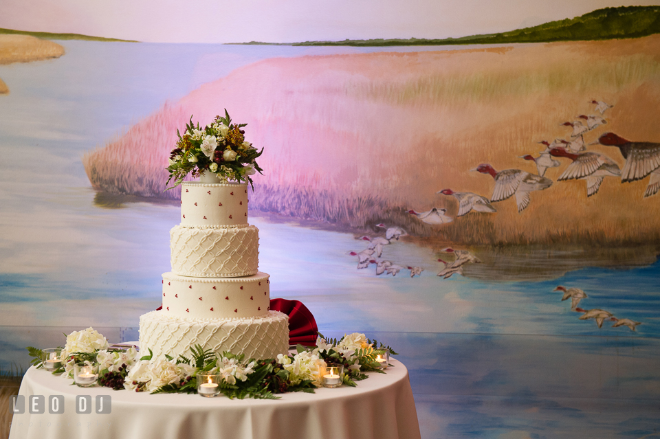 Wedding cake from Bay Country Bakery. Hyatt Regency Chesapeake Bay wedding at Cambridge Maryland, by wedding photographers of Leo Dj Photography. http://leodjphoto.com
