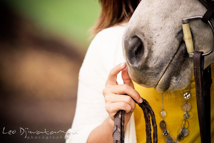 Girl touching her horse's nose. Annapolis Kent Island Maryland High School Senior Portrait Photography with Horse Pet by photographer Leo Dj