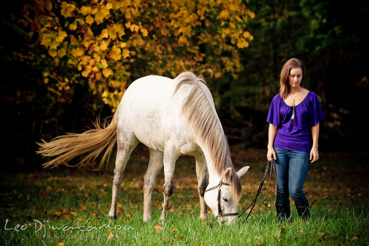 Girl owner bringing mare to eat grass. Annapolis Kent Island Maryland High School Senior Portrait Photography with Horse Pet by photographer Leo Dj