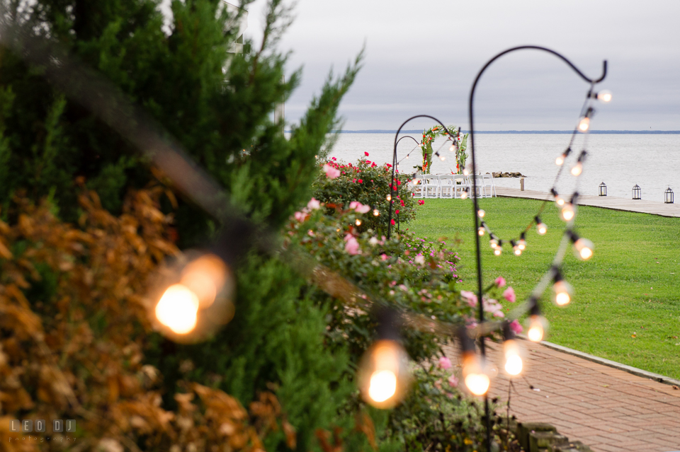 Silver Swan Bayside light string on the lawn photo by Leo Dj Photography