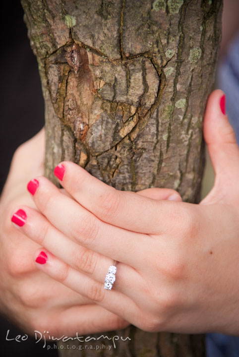 Engagement ring by a heart carved on a tree bark. Pre-wedding engagement photo session at Brookside Gardens, Wheaton, Silver Spring, Maryland, by wedding photographer Leo Dj Photography.