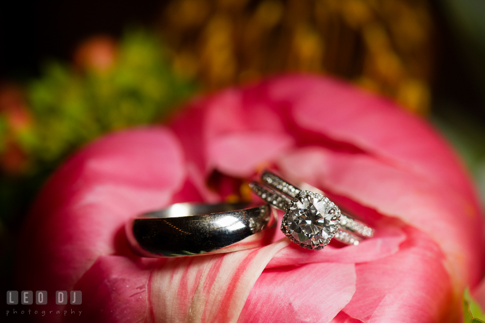 Beautiful diamond engagement ring and bands. Chesapeake Bay Environmental Center, Eastern Shore Maryland, wedding reception and ceremony photo, by wedding photographers of Leo Dj Photography. http://leodjphoto.com