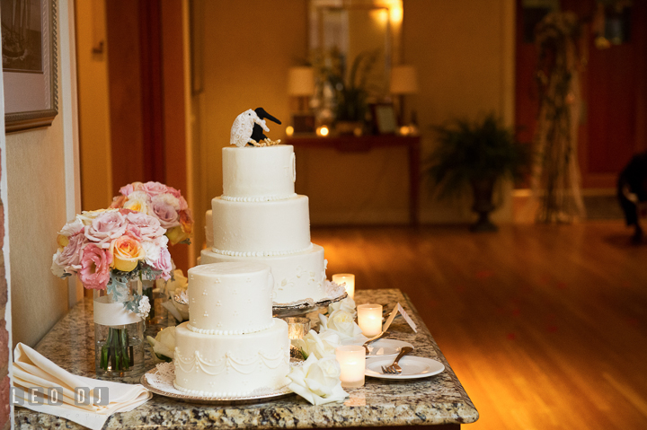 Three and two tier wedding cakes by Fiona's Cakes. Aspen Wye River Conference Centers wedding at Queenstown Maryland, by wedding photographers of Leo Dj Photography. http://leodjphoto.com