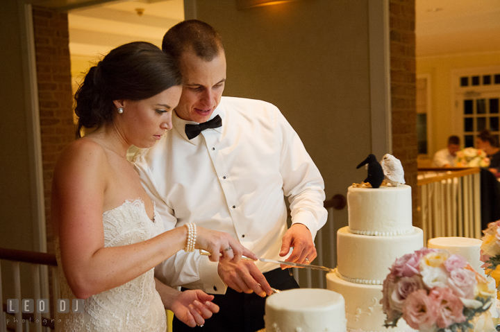 Bride and Groom cutting wedding cake by Fiona's Cake. Aspen Wye River Conference Centers wedding at Queenstown Maryland, by wedding photographers of Leo Dj Photography. http://leodjphoto.com